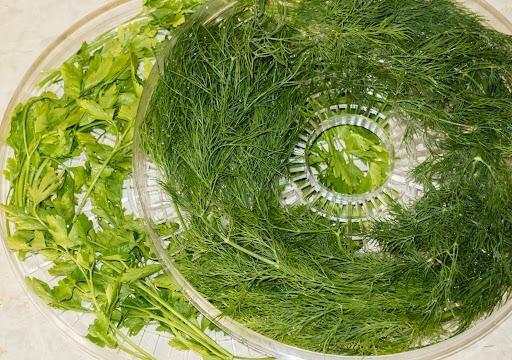 Сушка для зелени